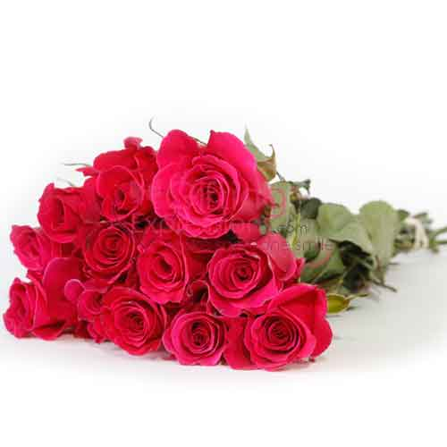 Send Red Roses To Pakistan